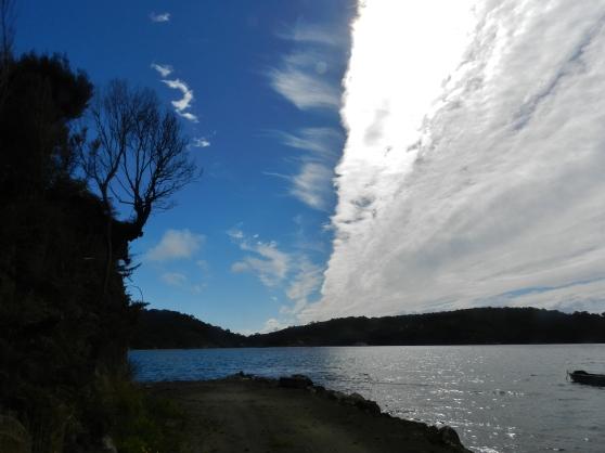 Half Cloud