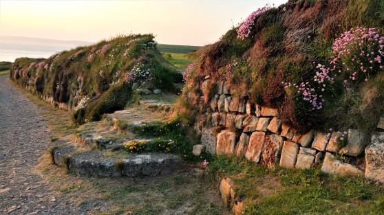 Druidstone Wall
