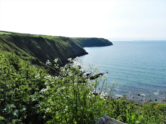 View St. Brides Bay (Bae Sain Ffraid)
