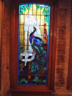 Stained Glass Peacock, W. A. Frost